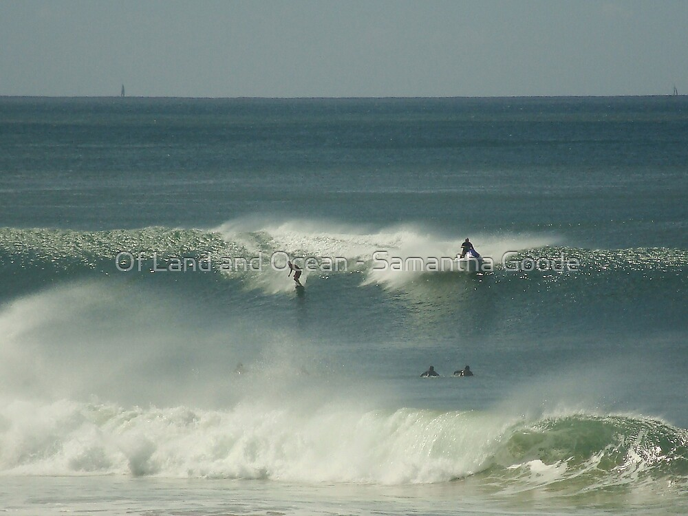 Surfing by Of Land & Ocean - Samantha Goode