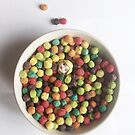 Bibbles for Breakfast by Aubrey Dunn