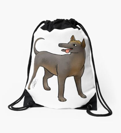Xoloitzcouintli Drawstring Bag