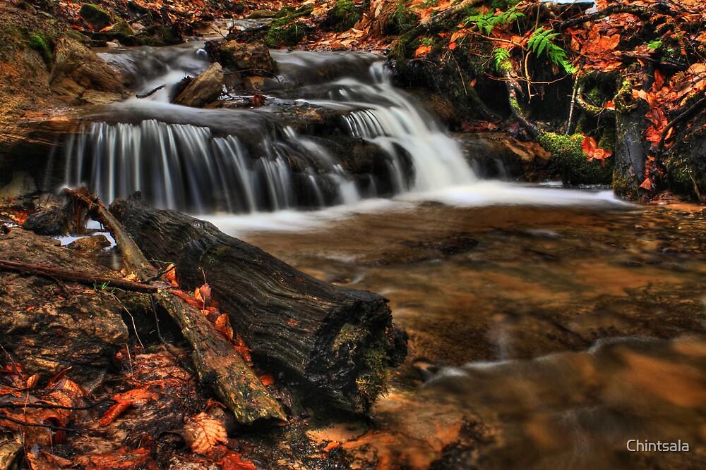 Wagner Falls Stream 1 by Chintsala
