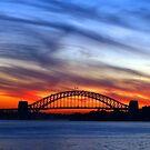 Sydney Sunset by Steven Guy