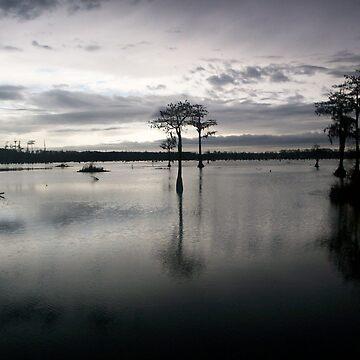 dusk on pond by happyartist