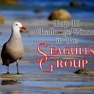 Seagulls Group Entry by LjMaxx