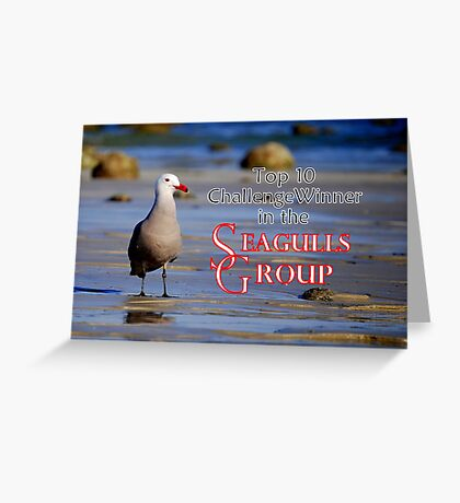 Seagulls Group Entry Greeting Card