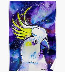 Galaxy Cockatoo Poster