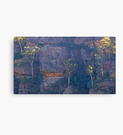 Trees on a cliff Canvas Print