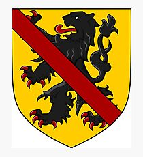 Coat of Arms of Namur, Belgium Photographic Print