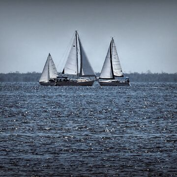 Three Sail Boats by posyrosie