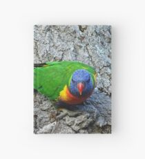 Rainbow Lorikeet Hardcover Journal