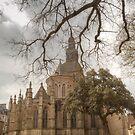 Basilica of Saint-Sauveur, Dinan by Michael Matthews