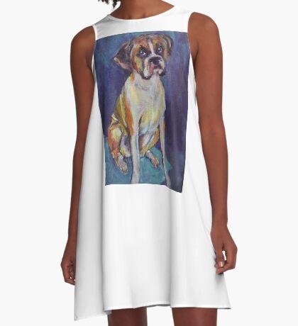 Boxer Boy A-Line Dress