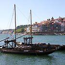 Barcos Rabelos by Anne-Marie Bokslag