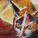 Scardey Cat by christine purtle
