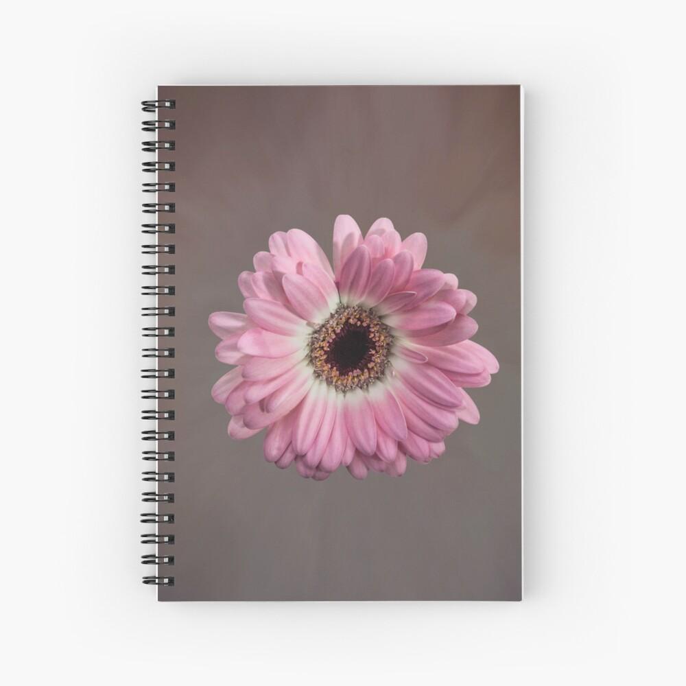 Single pink Gerbera Flower Spiral Notebook