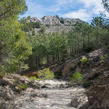 Almeria Landscape by SpainBuddy
