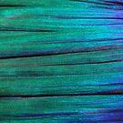 Green-Blue Reef Art by Norbert Probst