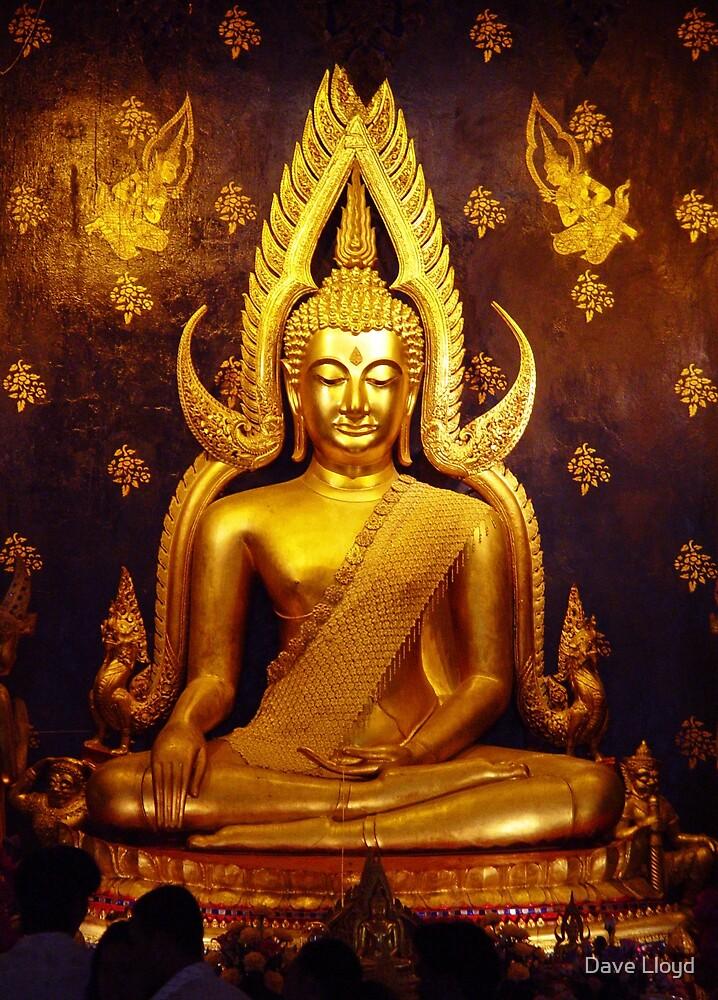 Gold Buddha by Dave Lloyd