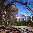 Half Dome Yosemite by Mark Ramstead
