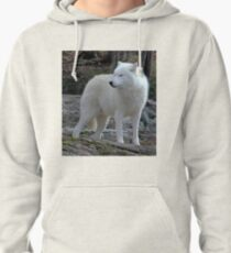 Arctic Wolf on the alert. Pullover Hoodie
