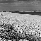 Net on a beach by Joe Gillbanks