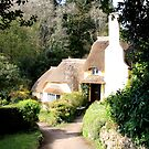 Selworthy Thatched Cottage by Dave Law