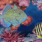 Trigger Fish by HDPotwin