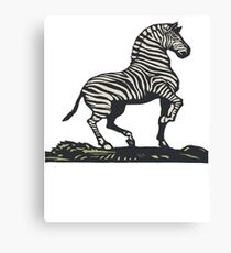 Antique Zebra Print Canvas Print