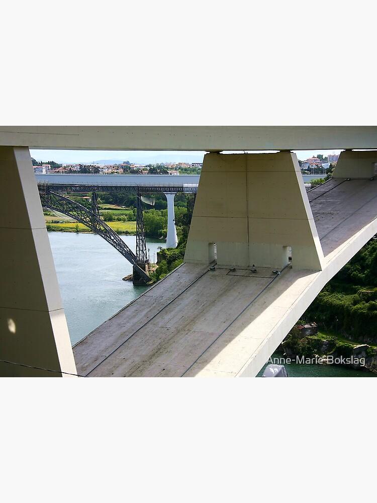 Bridges by amb1946