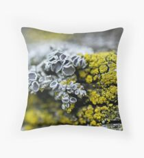competing lichens Throw Pillow