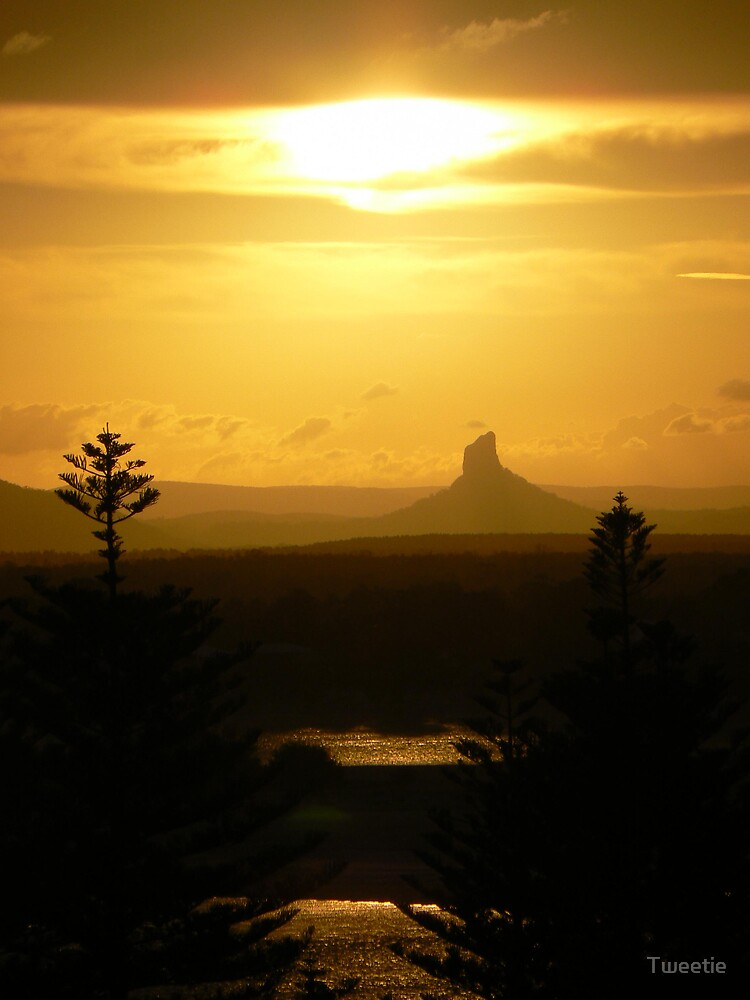 Glass House Mountains at Sunset by Tweetie