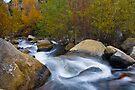 Bishop Creek by photosbyflood