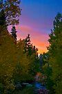 Bishop Sunset by photosbyflood