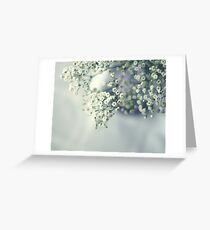 Whispery white Greeting Card