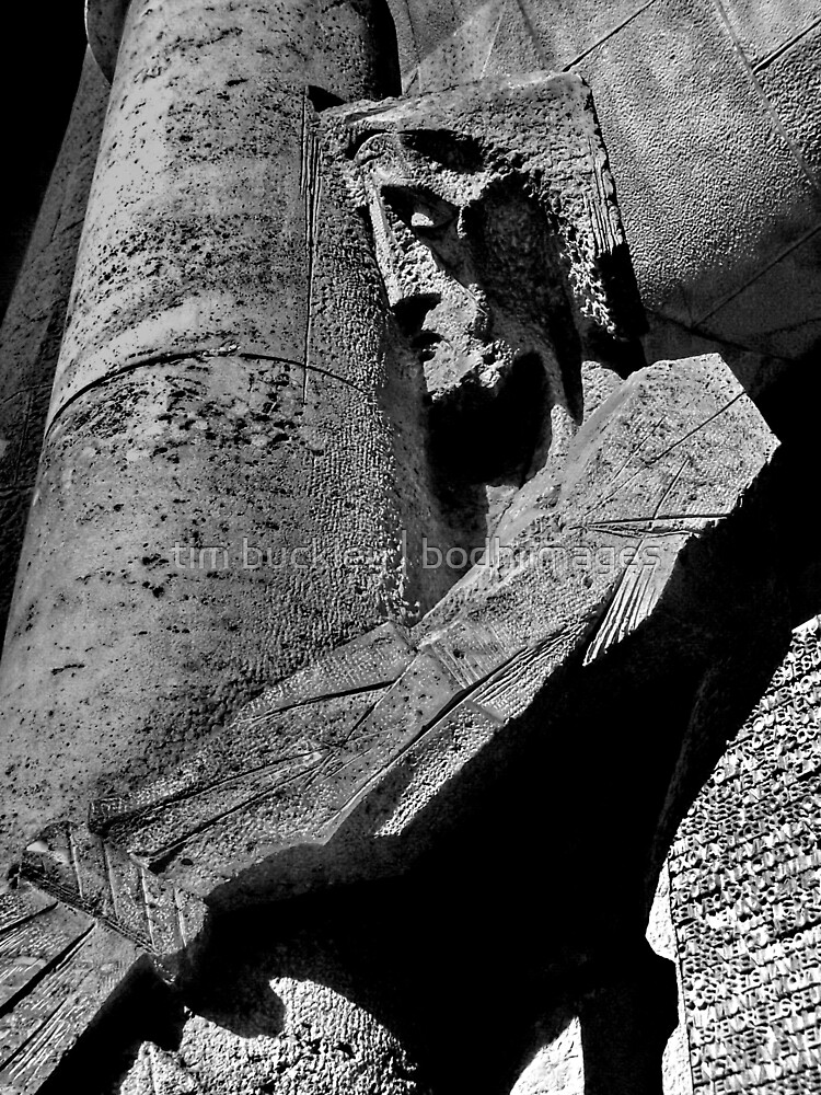 detail, sagrada familia. barcelona, spain by tim buckley | bodhiimages