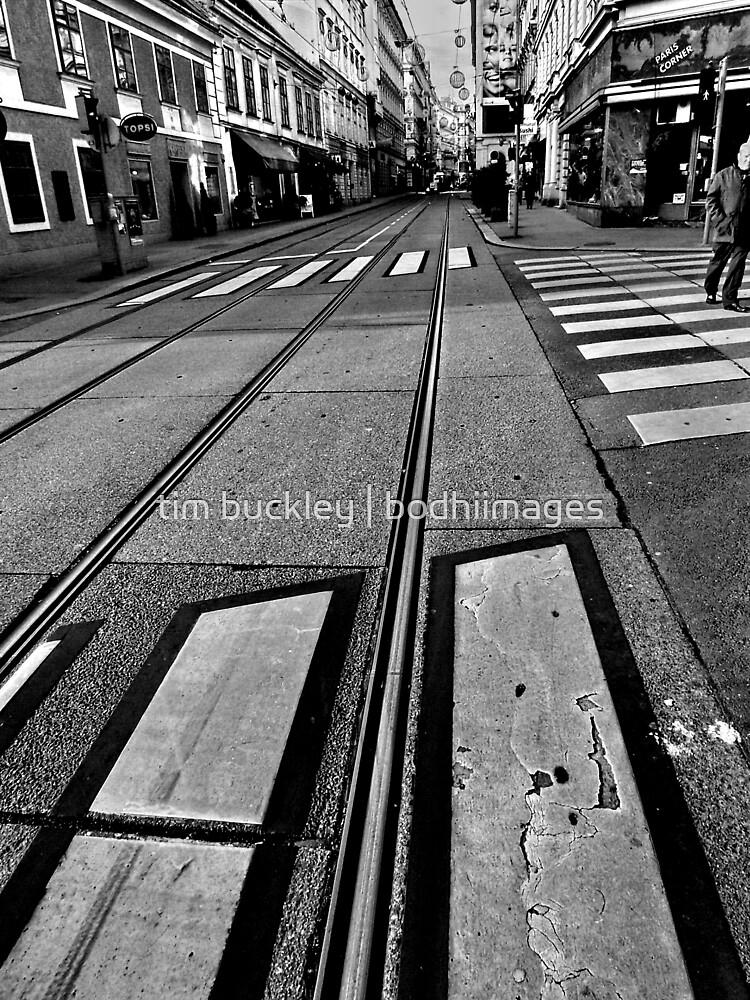 crossings. vienna, austria by tim buckley | bodhiimages