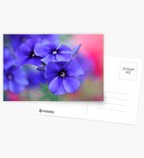 My Blue Heaven Postcards