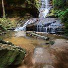Empress Falls, NSW by Bevlea Ross