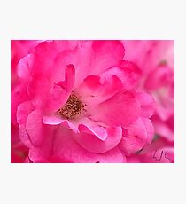 """Pink's Romance"", Photo Artwork Photographic Print"