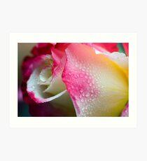Dewy Beauty Art Print