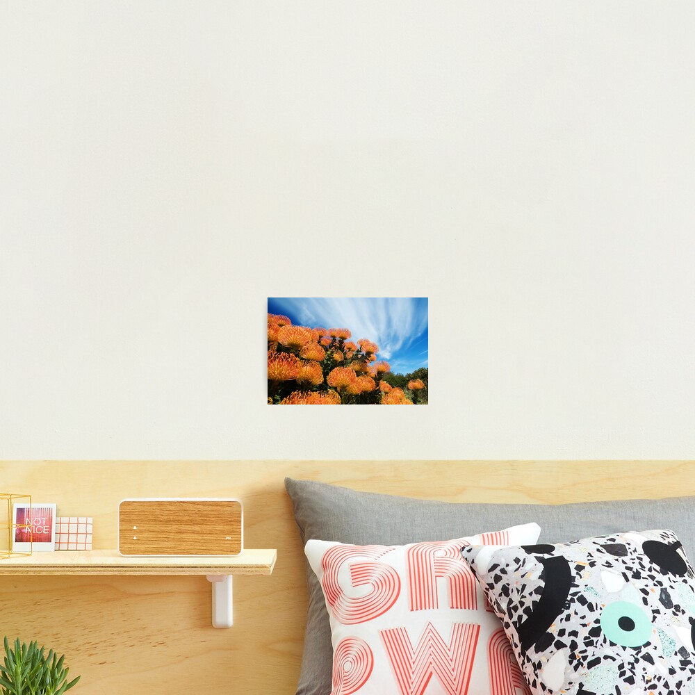 Incandescent Heights Photographic Print