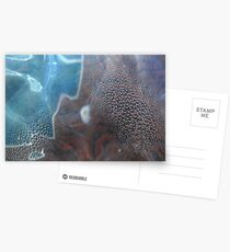 Condensation Postcards