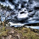 Squall over Mayne Island by toby snelgrove  IPA
