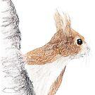 Small Squirrel by Linda Ursin