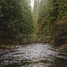 Pacific Northwest Adventure River Road Trip by artcascadia
