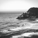 Heceta Head Lighthouse Black and White - Pacific Northwest Grandeur  by artcascadia