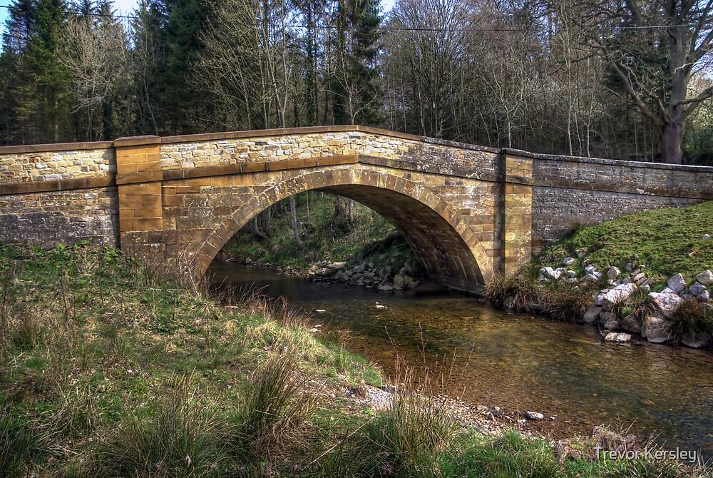 Hawnby Bridge - North Yorkshire by Trevor Kersley