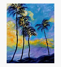 Moon over Palm Trees Photographic Print