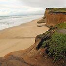 Coastal Highway 1 (view 9) by Cheri Sundra