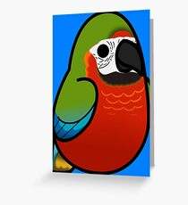 Too Many Birds! - Harlequin Macaw Greeting Card