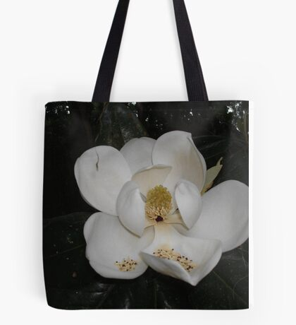 Southern Magnolia - first blossom Tote Bag